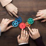 Samenwerken onder de Omgevingswet. Waar moet je op letten?